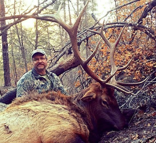 Arizona Elk Hunting – Basic Tips For Amateur Elk Hunters